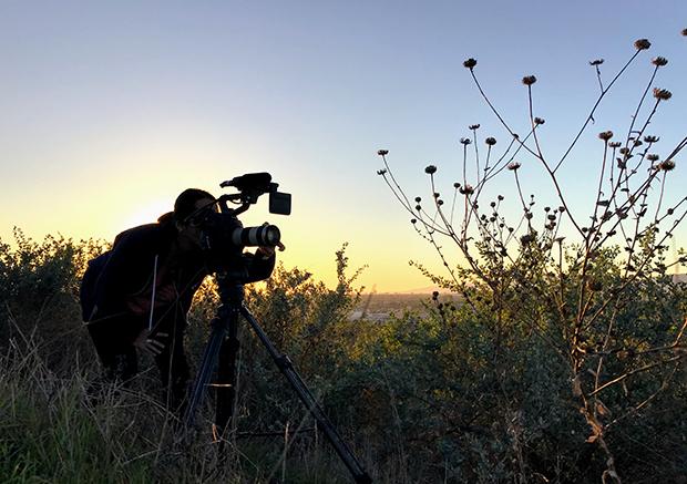 Short Films from the MFA in Documentary Film Program